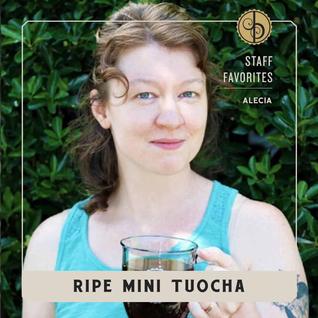 Staff Favorites: Alecia & Mini Tuocha