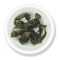 GABA Oolong wet leaf from The Jasmine Pearl Tea Co.