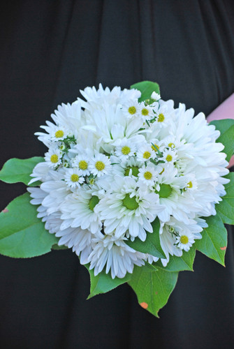 all mixed flowers-daisy mum and monte flowers