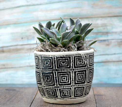 Retro black square designed ceramic potted succulent garden