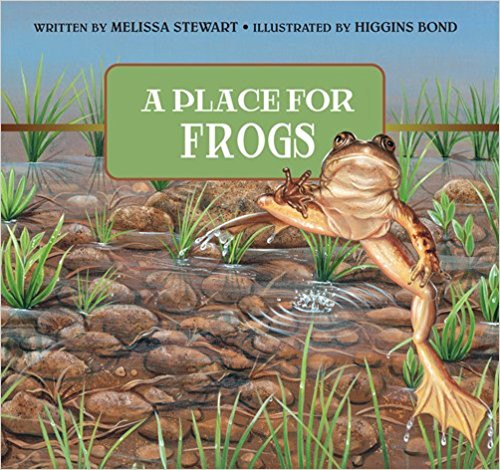 A Place for Frogs by Melissa Stewart