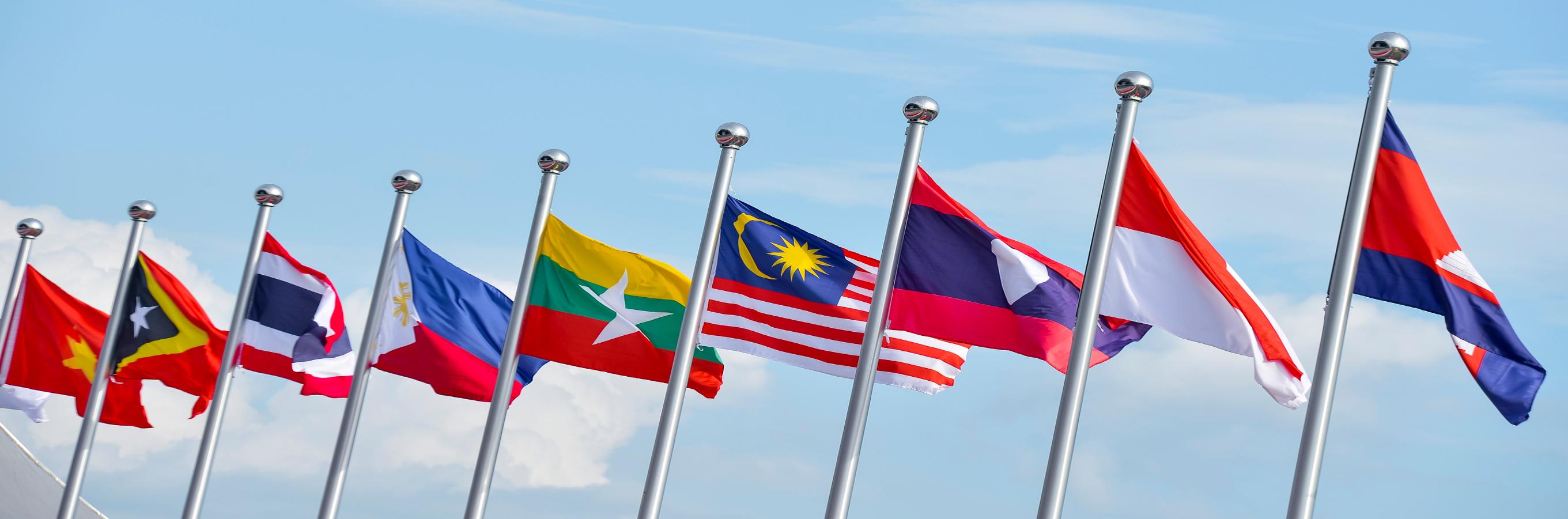 flags-resized.jpg