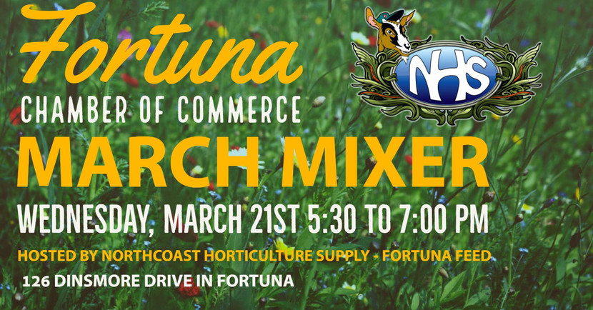 Fortuna Chamber March Mixer at NHS