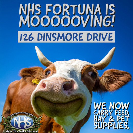 NHS – Fortuna Has Officially Moved