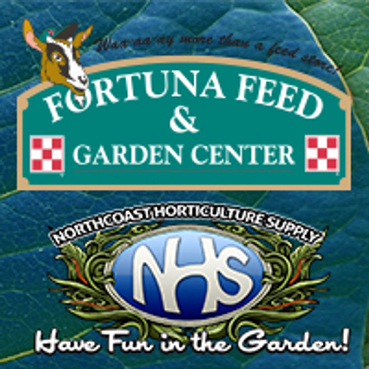 Welcome to the NHS Family, Fortuna Feed!