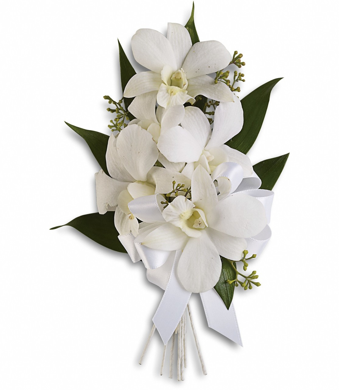 White Dendrobium Orchids With Seeded Eucalyptus And Italian Ruscus Approximately 4 1 2