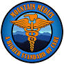 logo-mtnmedics.jpeg