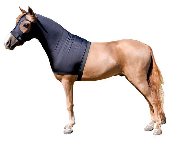 Mini Solid Stretch Sleazy Hood