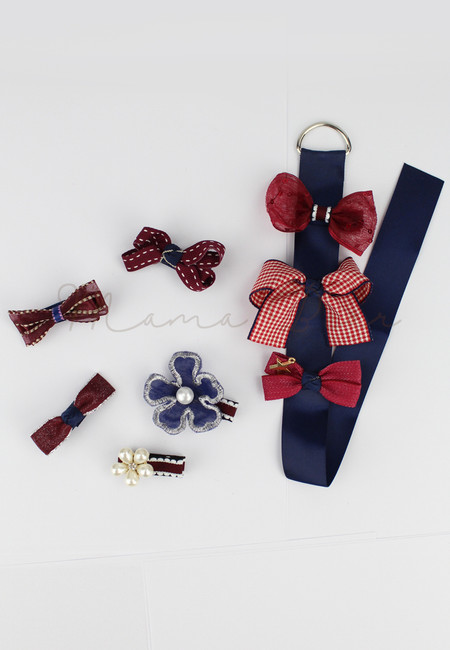 Fancy Ribbons Kids Hair Clip Set With Clip Organizer