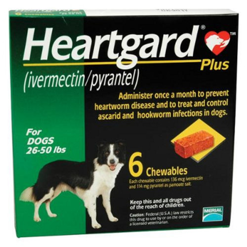 Heartgard Plus Chewables for Dogs 51100 lbs Brown 6 Pack