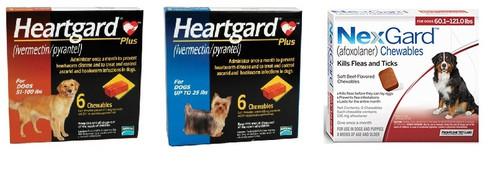 NexGard and Heartgard Combo for Dogs 100.1-121 lbs - 6 Pack
