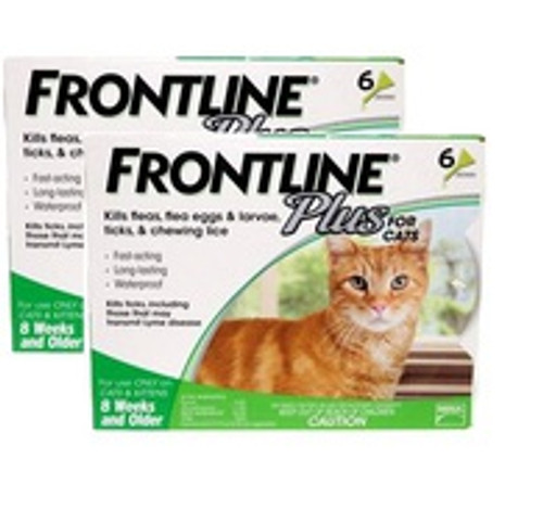 Frontline Plus for Cats - 12 Pack