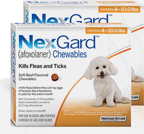 Nexgard for Dogs 4-10 lbs - 12 Pack