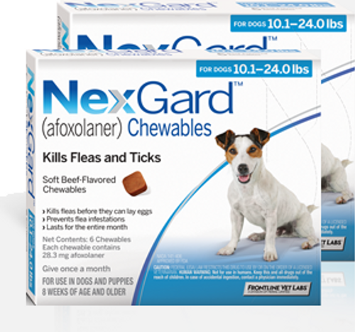 Nexgard for Dogs 10.1-24 lbs - 12 Pack