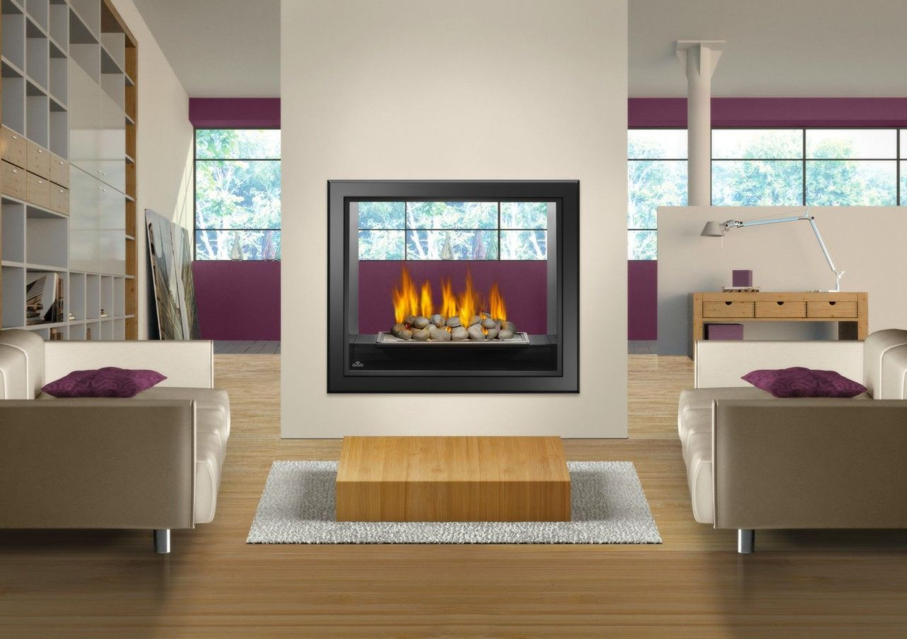 NAPOLEON HD81 SEE THROUGH GAS FIREPLACE