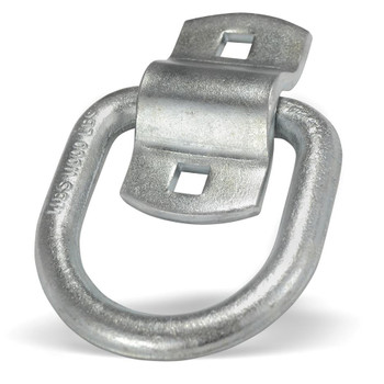 1/2 in. Bolt On D Ring with Clip