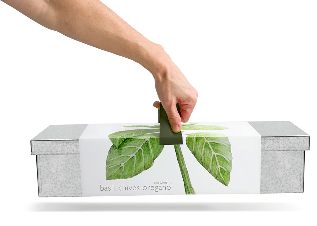Culinary Herbs Window Grow Box