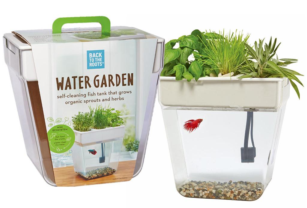 water garden eartheasycom - Water Garden Plants