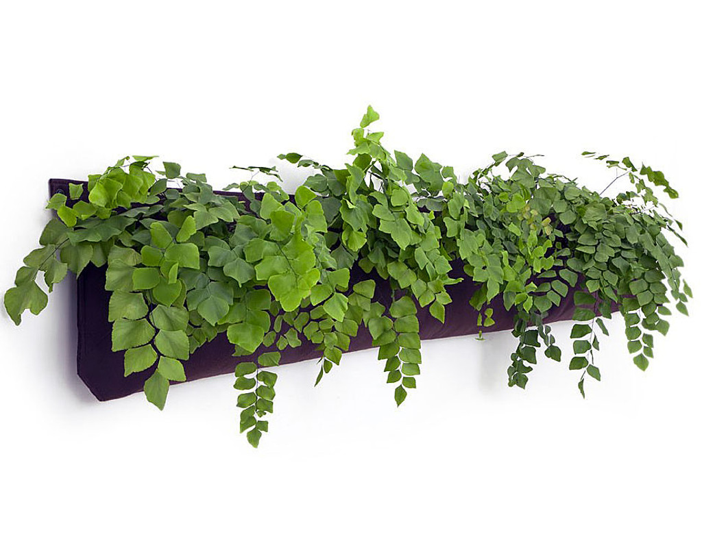 Vertical Gardening Woolly Pockets - Wally Five