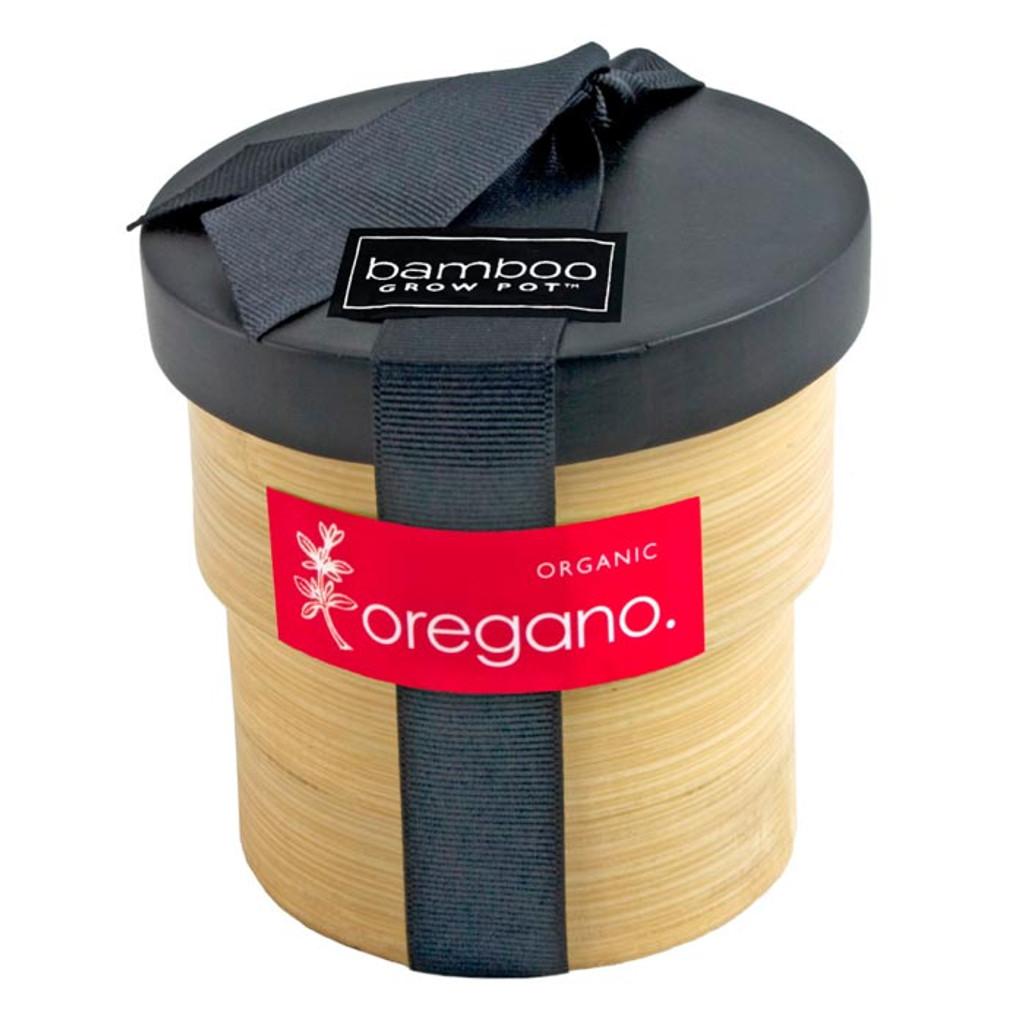 Oregano Grow Pot