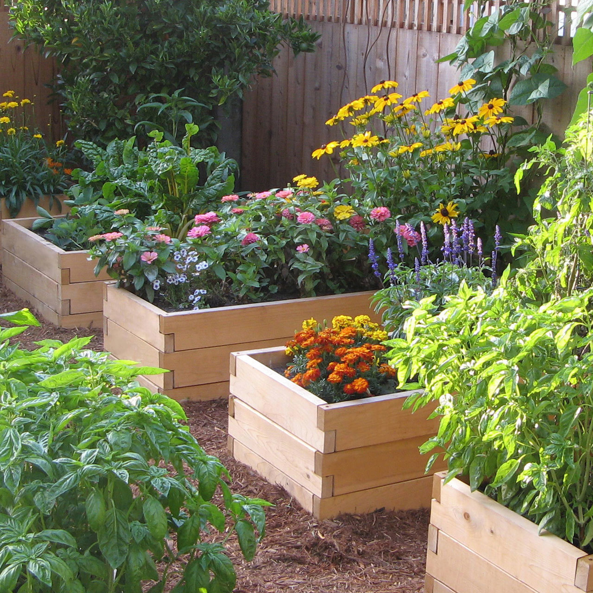natural cedar raised garden bed with trim pack - Garden Bed