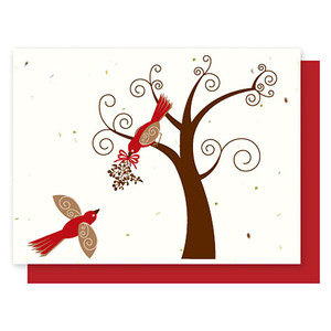 Grow-A-Note Red Bird Box Set - 5 Cards