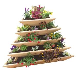5 Level Plant Pyramid