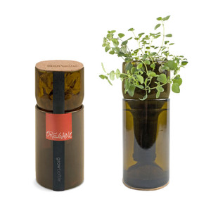 Recycled Grow Bottle - Oregano