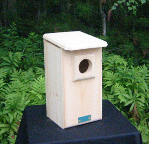 Saw-Whet Owl / Screech Owl House