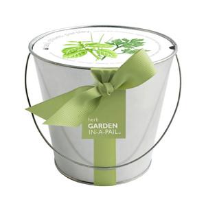 Herb Mini-Garden-in-a-Pail
