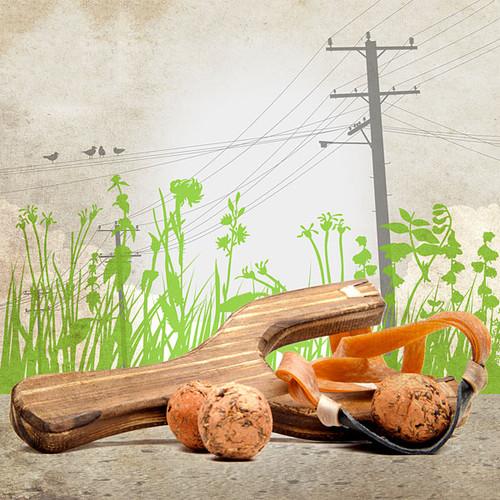 Wooden Slingshot