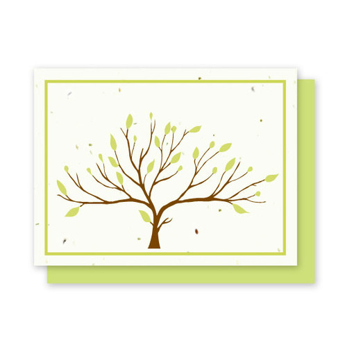 Grow-A-Note Tree Cards Box Set - 4 Cards