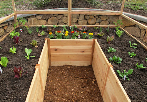 Cedar Complete Raised Garden Bed Kit - 8' x 8' x 20""