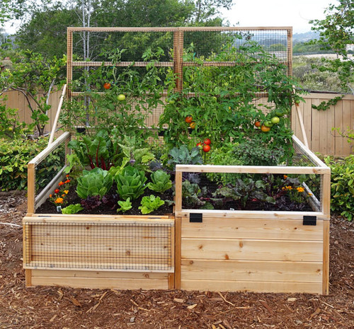 3 X 6 Raised Garden Bed With Hinged Fencing And Trellis