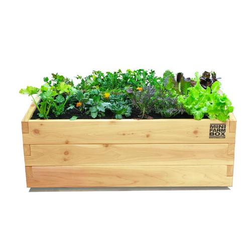 Rolling Patio Planter Eartheasy Com