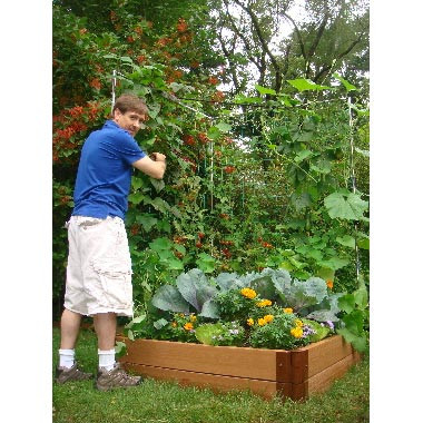 Genial Raised Garden Bed Vegetable Trellis   4u0027 ...