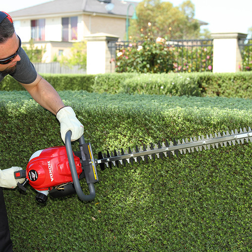 Honda HHH25 Hedge Trimmer