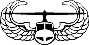 USA Air Assault Badge
