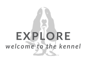 Hush Puppies Explore, welcome to the kennel