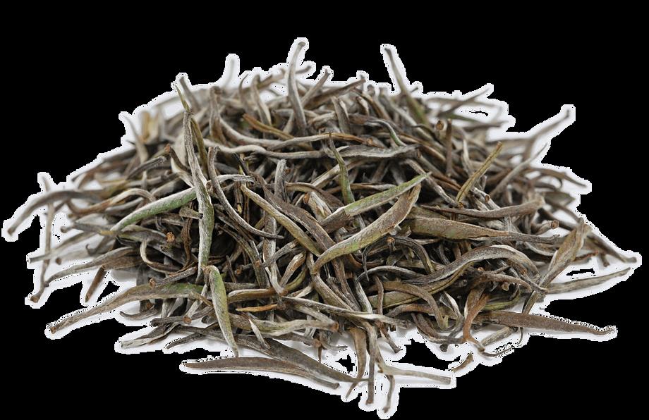 Organic Rwanda Silver Needle White Tea