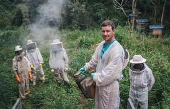 Bee Seasonal Beekeepers