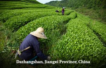dazhangshan-jiangxi-province-china-1.jpg