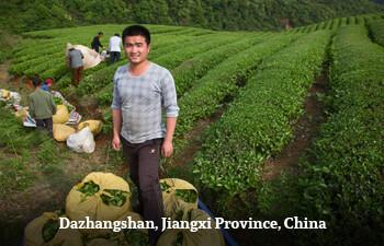 dazhangshan-jiangxi-province-china-7.jpg