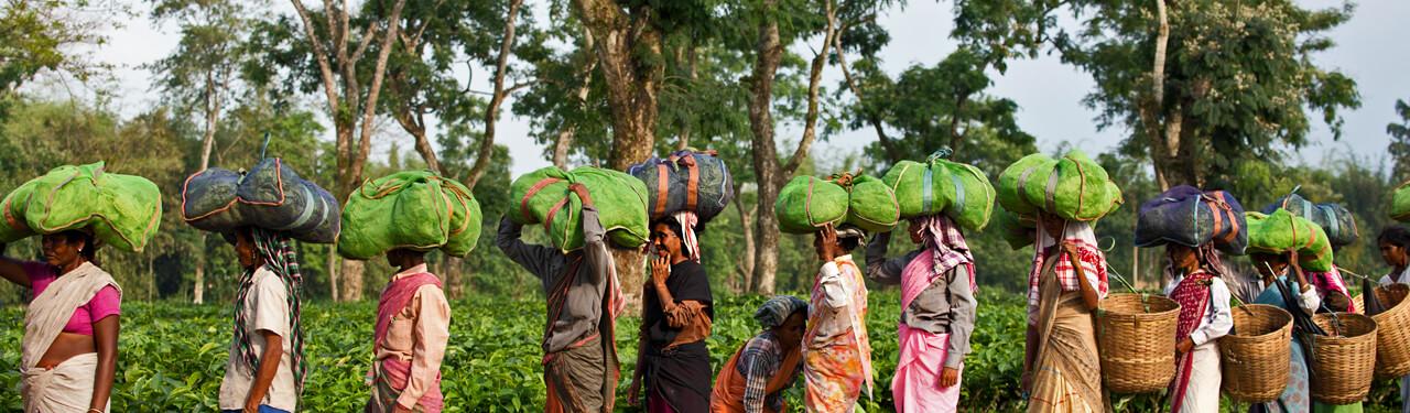 fair-trade.jpg