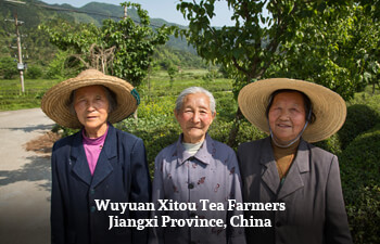 wuyuan-xitou-tea-farmer-jiangxi-province-china-2.jpg