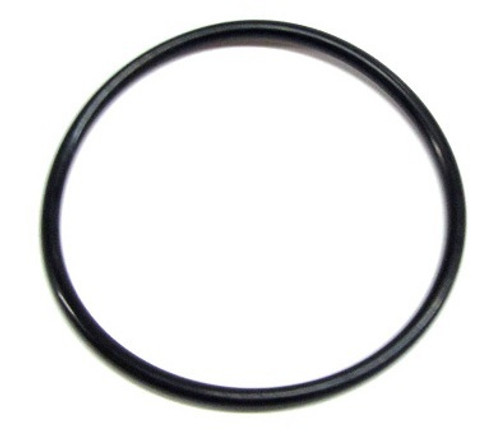 6000-645 Pump Union O-Ring (2-Pack)