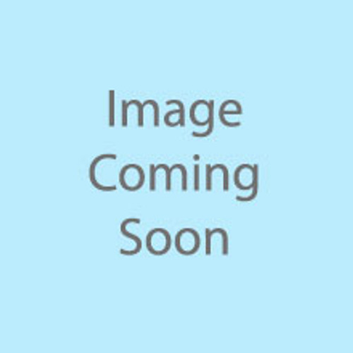 6000-517 240V Transformer w/Plug