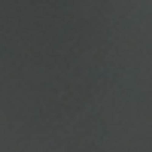 Seche Premier Colour Lacquer | Assertive 65581 | 0.5 fl oz.