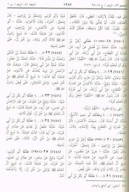 Sahih Muslim Arabic Only