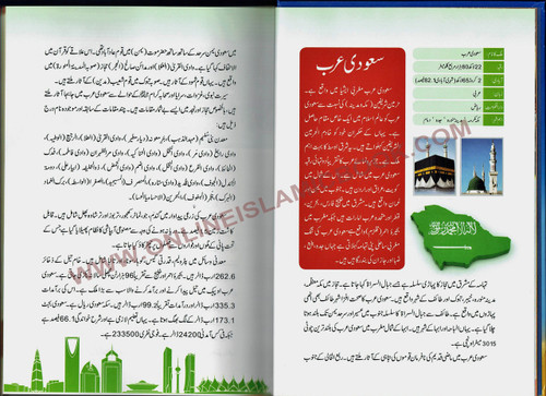 Urdu: Mere Sunehray Safar Naamay by Abdul Malik Mujahid